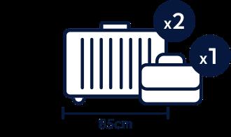 Standard and Standard Premier luggage allowance