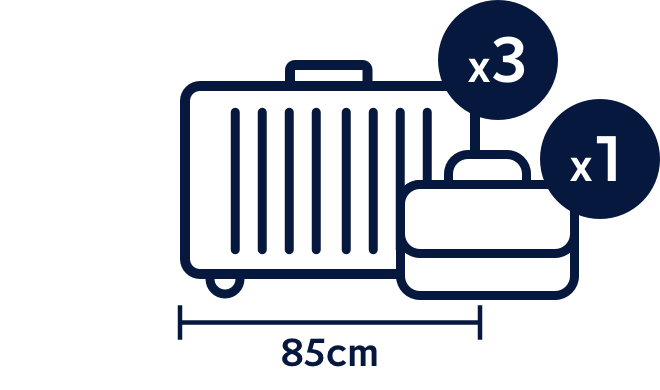 Business Premier luggage allowance