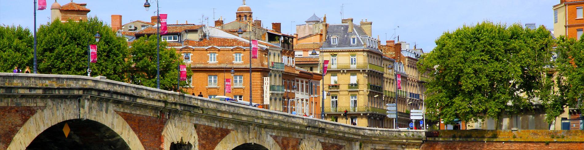 Toulouse bridge