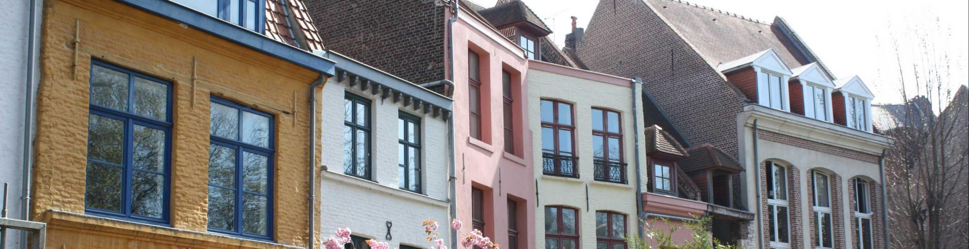 Pretty Flemish style houses with a cherry blossom in front