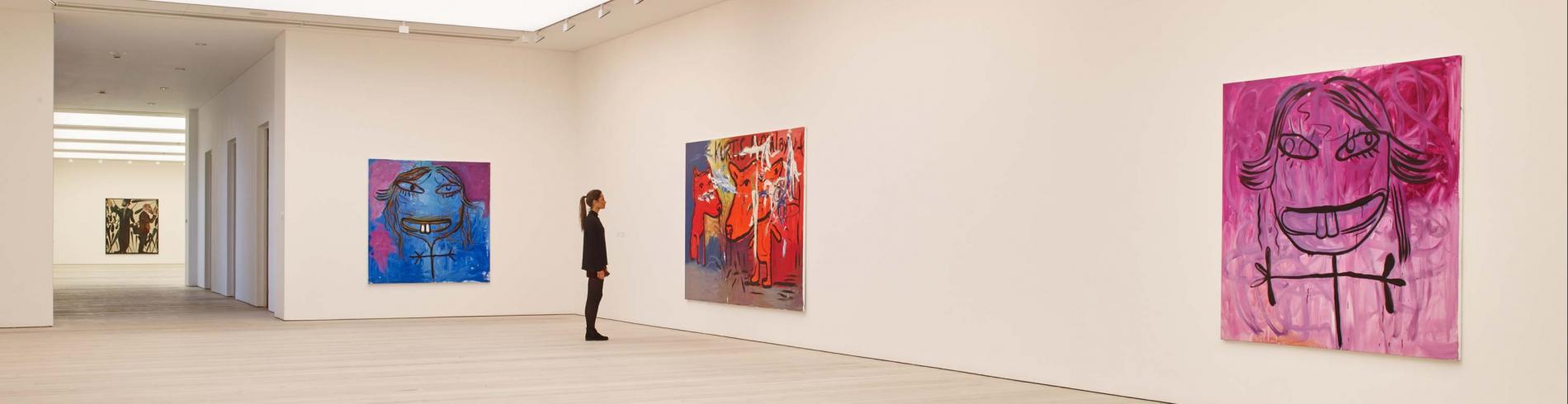 Exhibits at the Saatchi Gallery