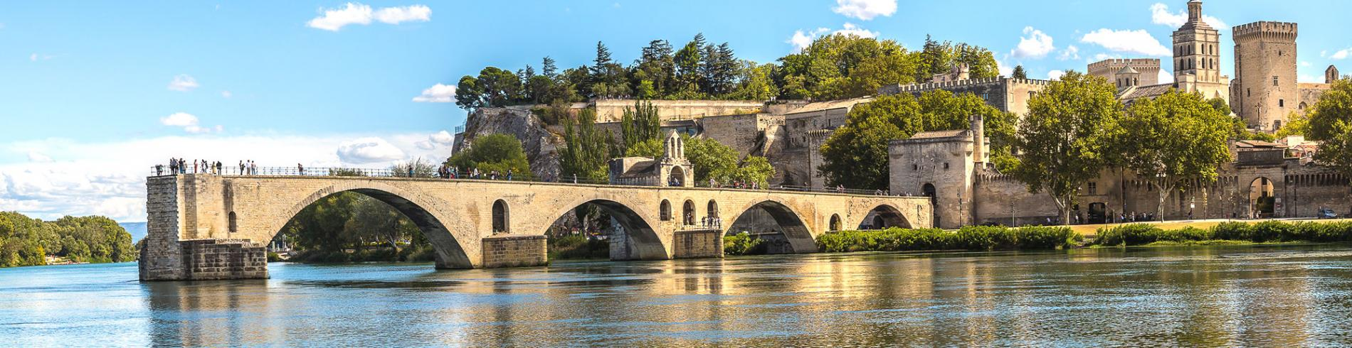 View of Avignon and the bridge from across the river