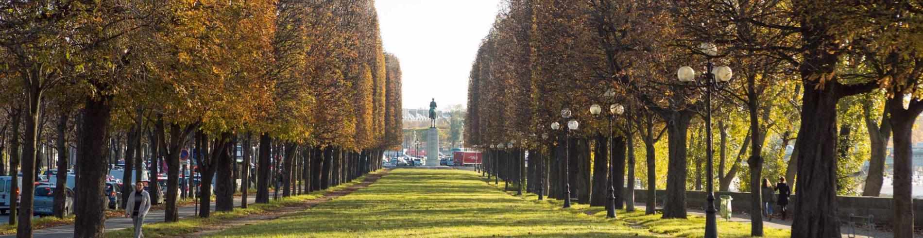 Visit Paris in Autumn