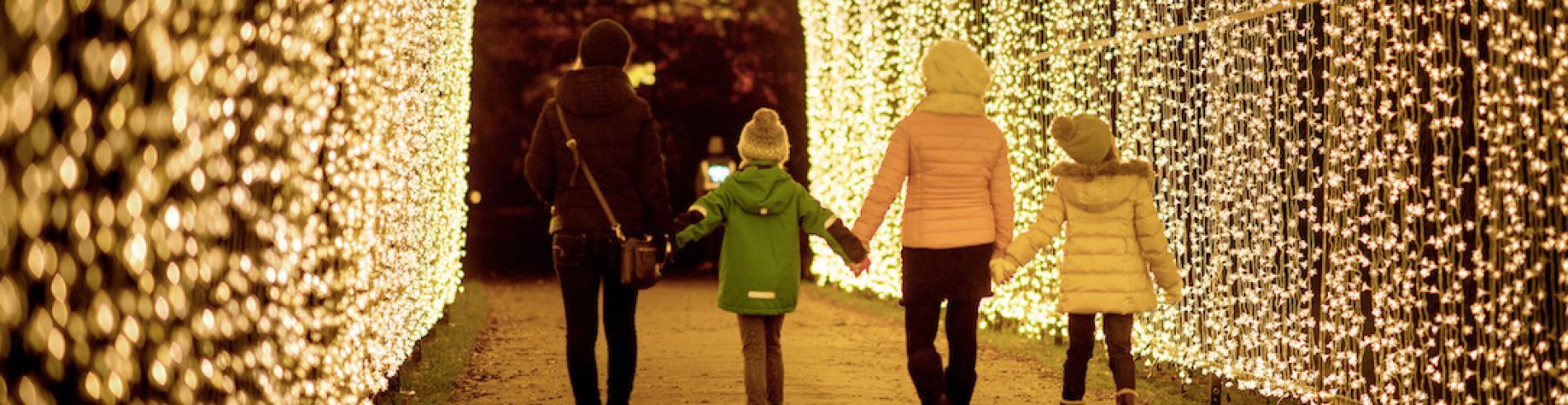 Christmas lights at kew Garden