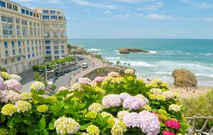Biarritz Flowers and Coastline