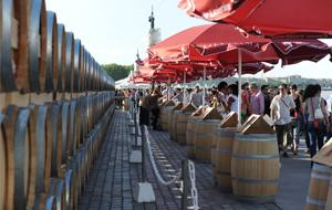 Bordeaux wine festival