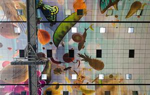 Rotterdam Markthal Ceiling