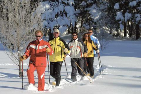 Five people walking in the snow