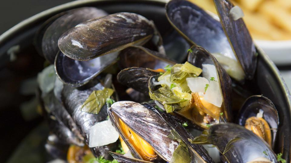 Big bowl of moules