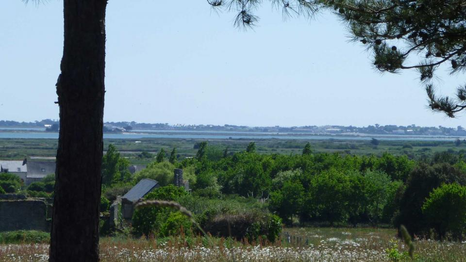 View of the area around Guerande and the salt marshes from a hill